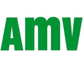 Teléfono AMV Seguros